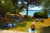 Rovinj Golden Bay view from the pine trees
