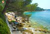 Rovinj Golden bay shadow under the pine trees